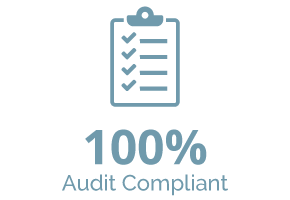 WP100Audit